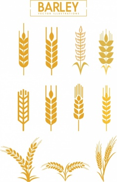 barley icons collection various brown flat shapes