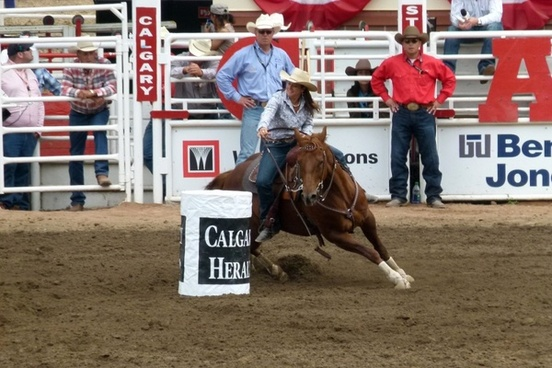 barrel racing calgary stampede
