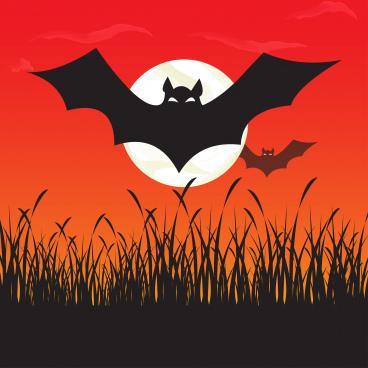 bat halloween party moon night