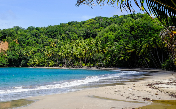 batibou beach dominica