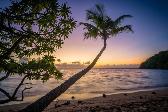 bay beach coast exotic holiday island landscape