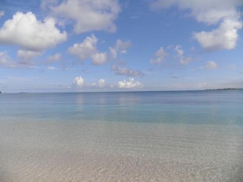 beach bahamas ocean