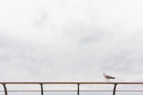 beach bench cloud fence lake landscape loneliness