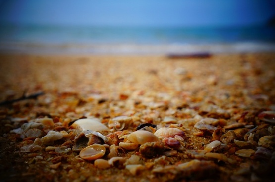 beach close up holiday ocean pebble rock sand sea