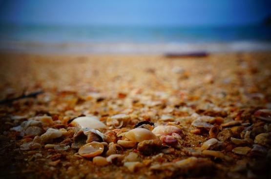 beach close up holiday ocean pebble rock sand sea