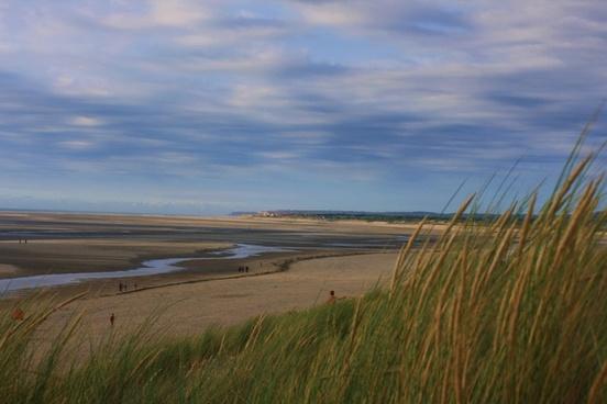 beach cloud coast distance dunes field grass