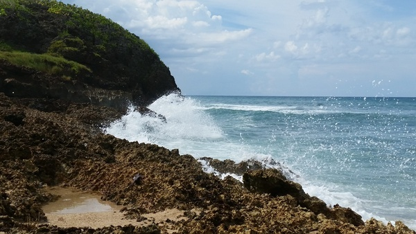 beach coast coastline crash island landscape maui