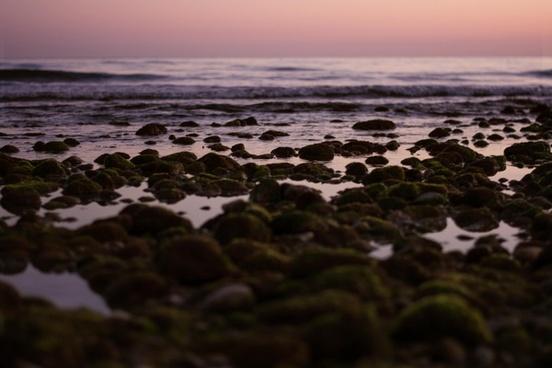 beach coast dusk evening landscape morning nature