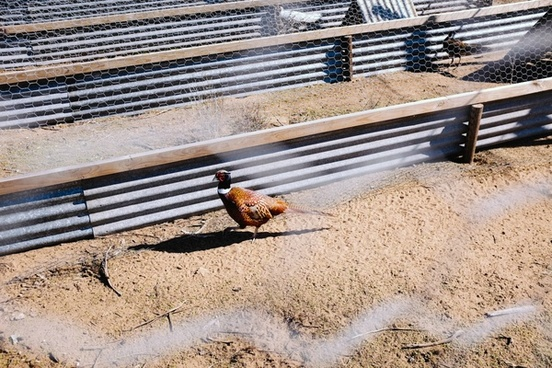 beach dirt dirty dry earth equipment ground heavy