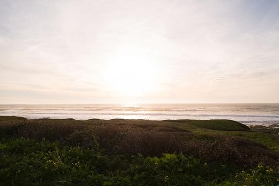 beach field fog grass horizon lake landscape light