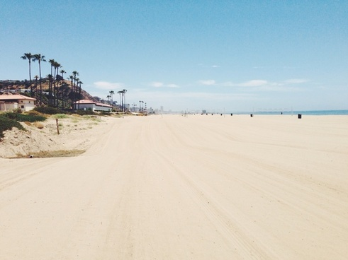 beach holiday ocean palm tree sand sea shore sky