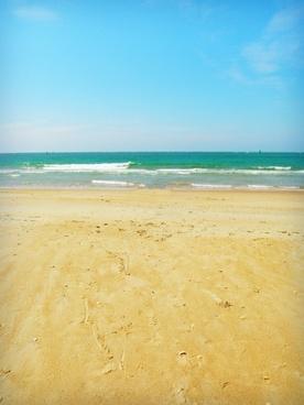 beach nature marine