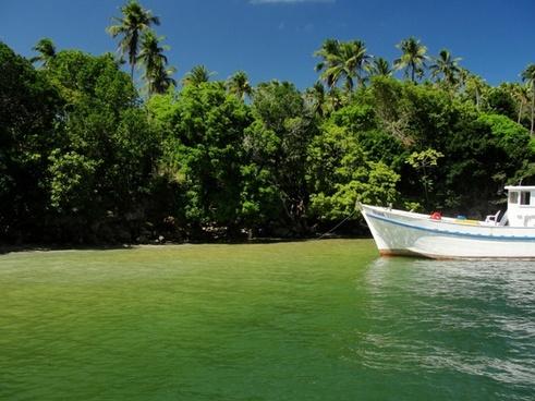 beach paradise sea