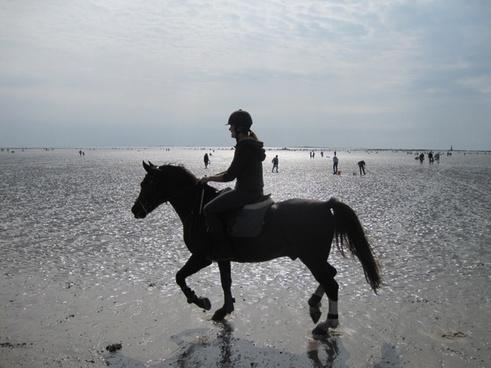beach reiter atlantic