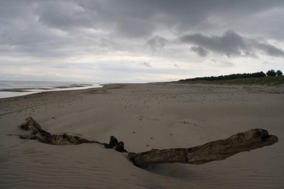 beach sand gloomy