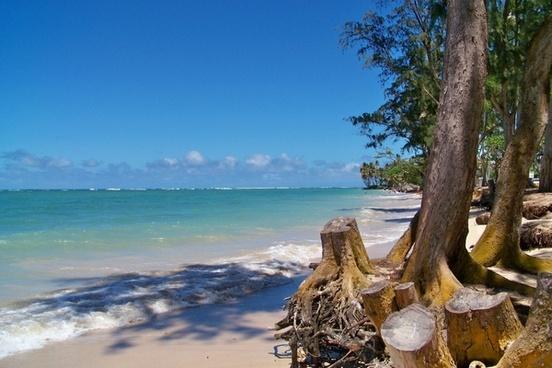 beach sandy beach beautiful beaches