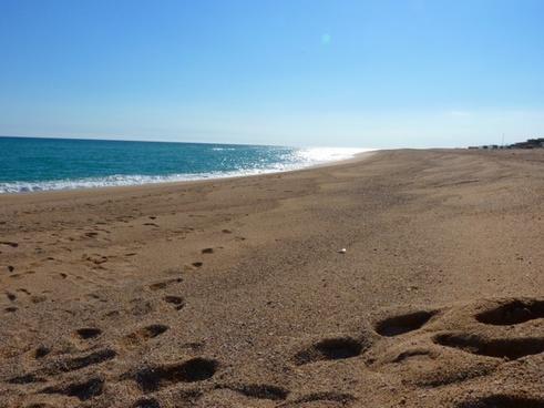 beach sea wave