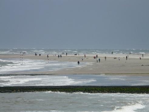 beach sea wind