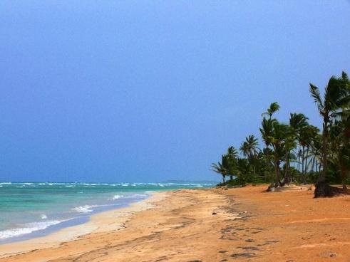 beach sun holiday