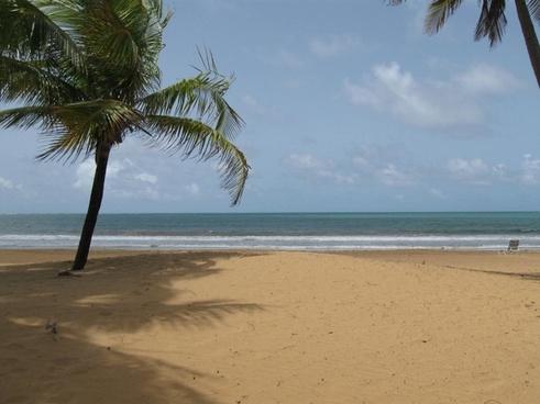 beach sunny day
