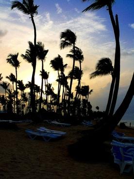 beach uvero alto