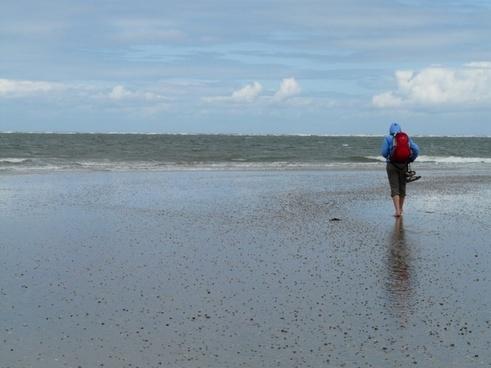 beach walk beach sea