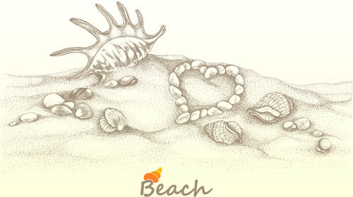 beach with shell retro background vector