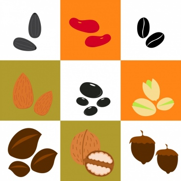 bean and nuts background various types isolation