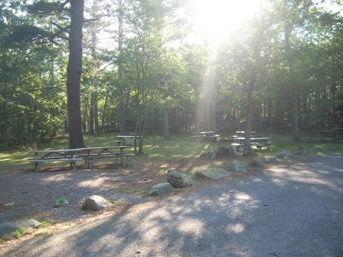 bear brook picnic area