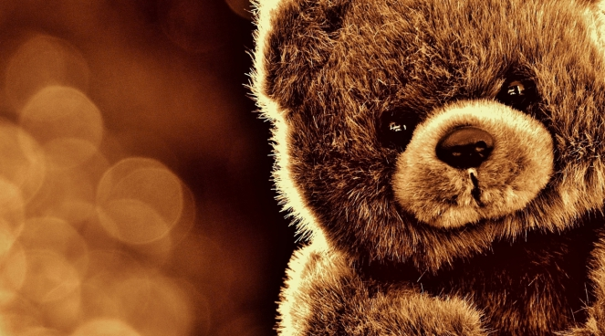 closeup of cute teddy bear on bokeh background