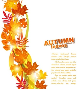 beautiful autumn leaf background 02 vector