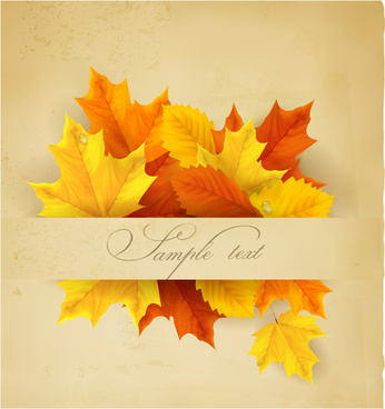 Beautiful autumn leaves background art vectors