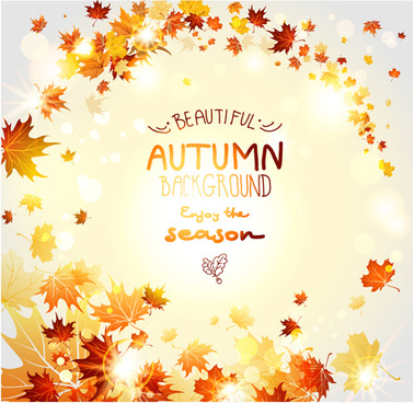 beautiful autumn leaves background creative vector