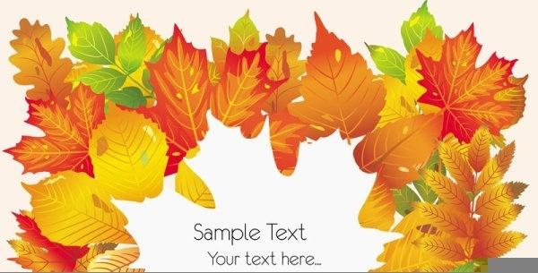 beautiful autumn leaves card 02 vector