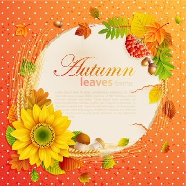 beautiful autumn leaves frame background 05 vector