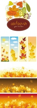 beautiful autumn leaves vector