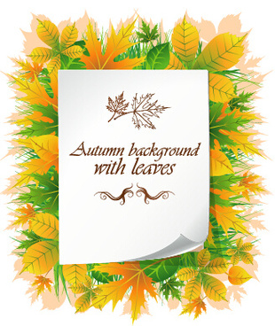 beautiful autumn leaves with paper background