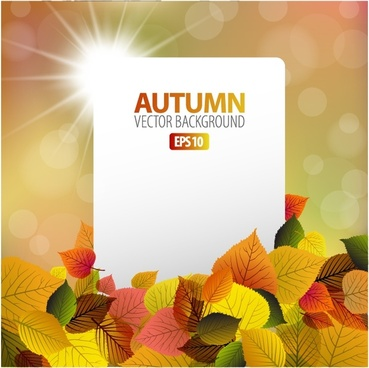 beautiful autumn maple leaf background vector illustration