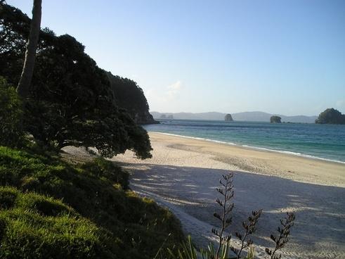 beautiful beach new zealand beach