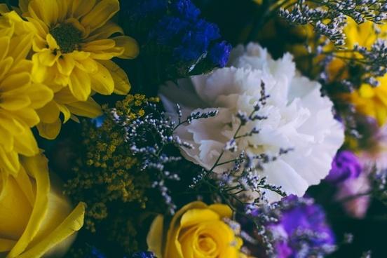 beautiful bouquet bright color decoration field