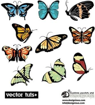 beautiful butterflies vector