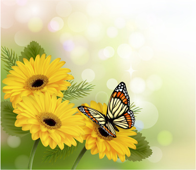 beautiful butterfly and flower vector background