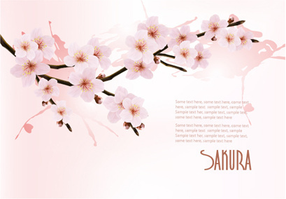 beautiful cherry vector background art