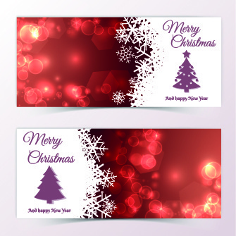 beautiful christmas cards design vector