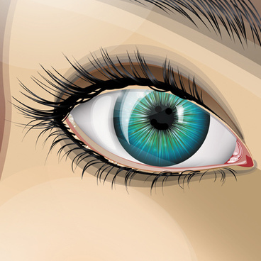 beautiful eyes vector graphic