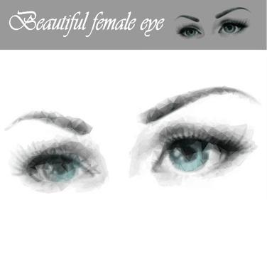 beautiful female eye vector graphics
