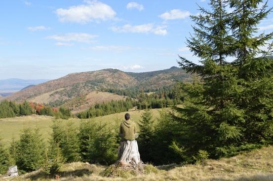 beautiful field forest grass hiking hill landscape