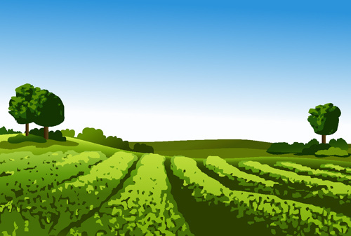 beautiful fields landscapes vector set