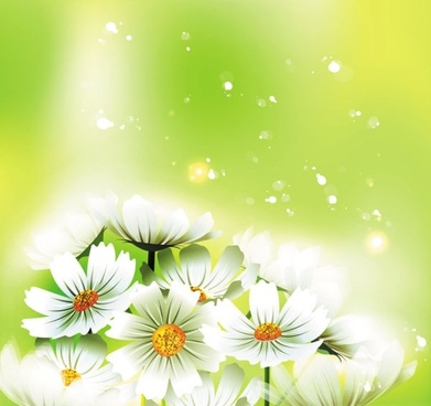 beautiful flowers 01 vector