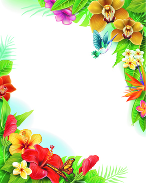 beautiful flowers and butterflies vector background